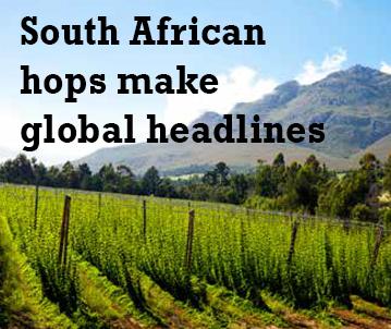 SA Hops